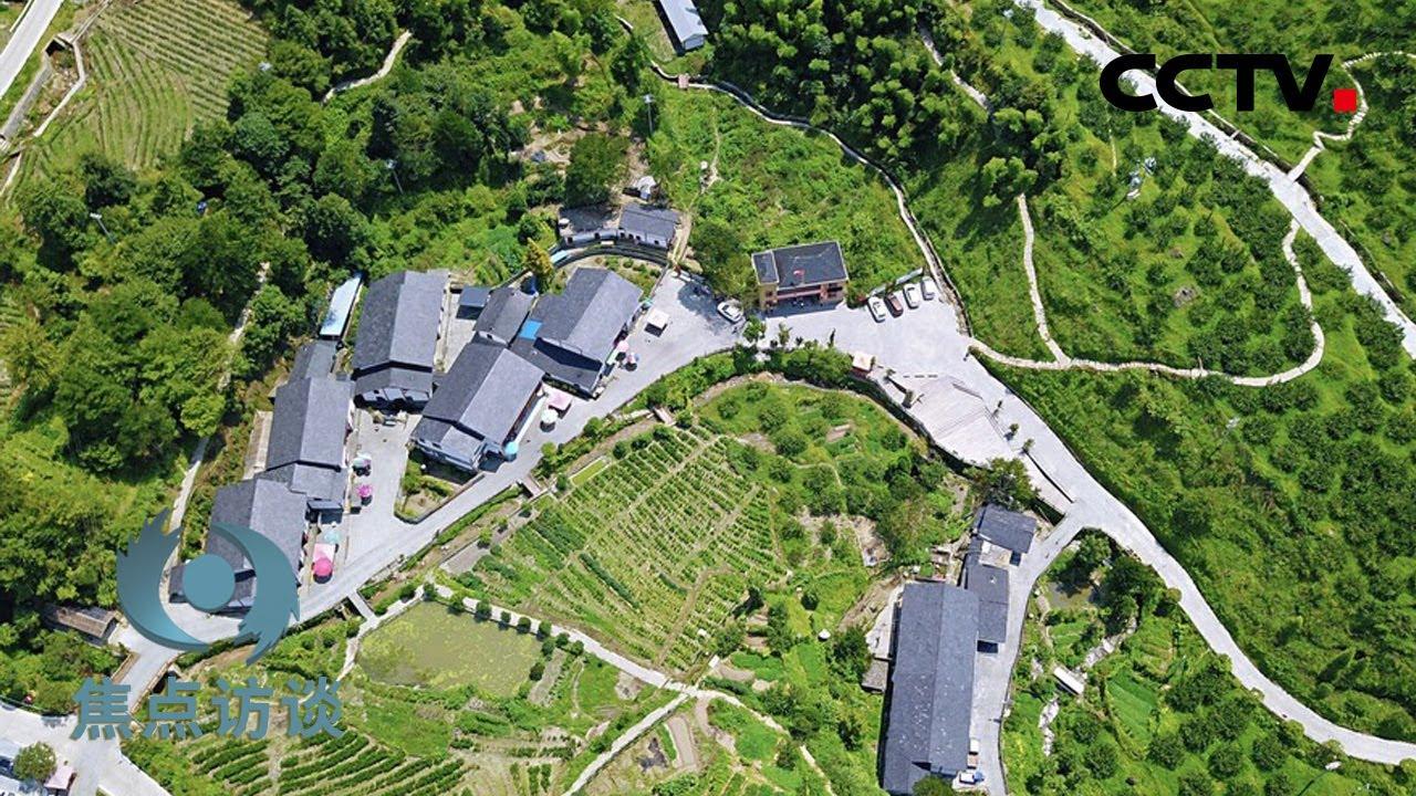 神山村的神奇巨变   CCTV「焦点访谈」20200814