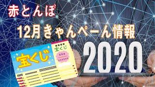 赤とんぼ・ヤングプラザ12月合同キャンペーン紹介動画