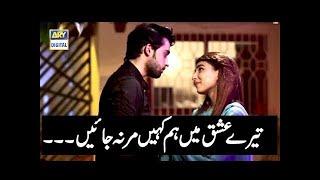 Tere Ishq Main Hum Kahein Mar na Jayain - -OST BALAA SONG