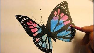 butterfly draw easy step pencil wings pattern drawing van tekening vlinder getdrawings afkomstig
