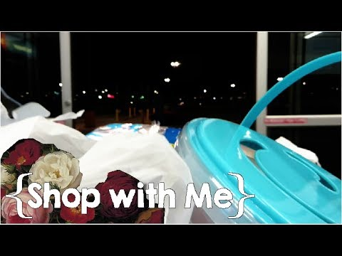 Out After Dark║ Large Family Shop with Me Vlog │ June 2017