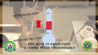 basic food safety for food handlers    philippines