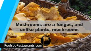 Mushrooms are Fungus   Food Facts   Poulsbo Restaurants