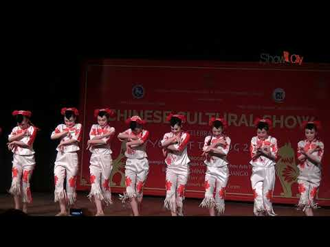 Chinese Cultural Show | Chinese Happy New Year | 2018 | NCUI | New Delhi | India