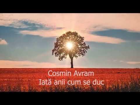 Cosmin Avram - Iata anii cum se duc