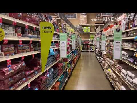 How To Find The Best Dog Food In Petstores:Take A Walk With A Canine Nutritionist