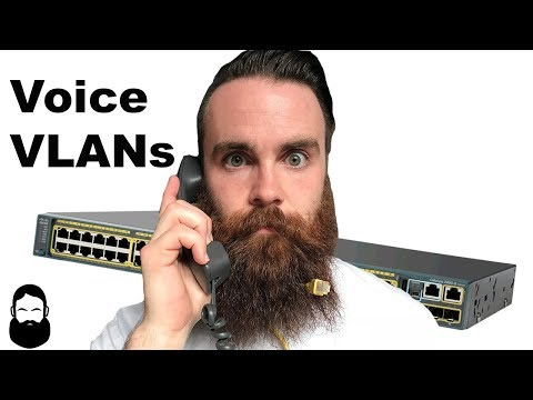 Voice VLANs - What are they and why do we need them?