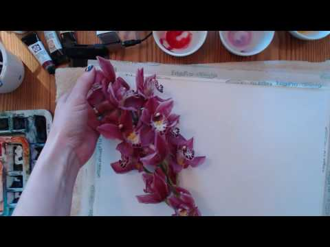 Angela Fehr Watercolor Painting Live Stream: Orchid Demonstration