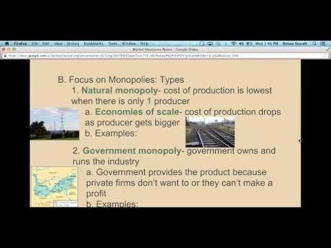 Chapter 7 Notes: Types Of Monopolies