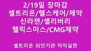 [주식투자]2/19일 장마감(셀트리온/헬스케어/제약/신…