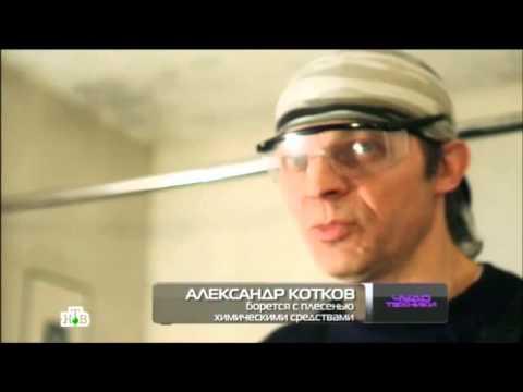 видео: Домашняя вентиляция в передаче