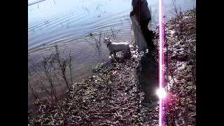 Pescando con tarraya en laguna de Teuchitlan, jalisco 1 de 2