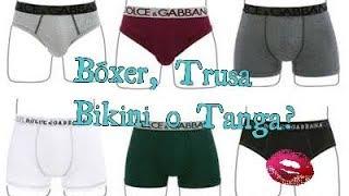 Baixar Bóxer, Tusa, Bikini o Tanga?