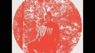 Owen Pallett- Oh Heartland, Up Yours
