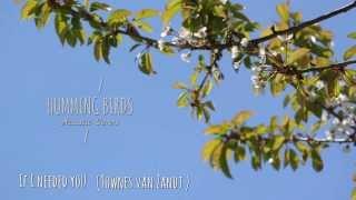 HUMMING BIRDS - If I needed you (Townes van Zandt cover)