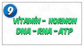9. Sınıf | Vitamin - Hormon, DNA - RNA - ATP