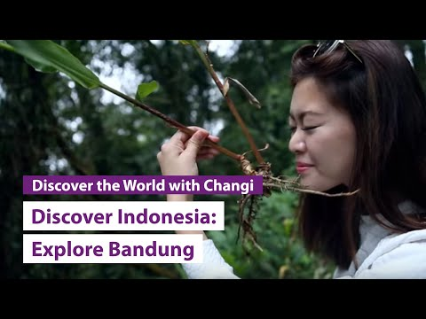 Discover Indonesia: Bandung