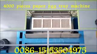 carton box forming egg dishes machine-apple tray machine-whatsapp:0086-15153504975