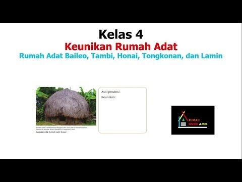 Keunikan Rumah Adat Baileo Rumah Adat Tambi Rumah Adat Honai Tongkonan Dan Lamin Youtube