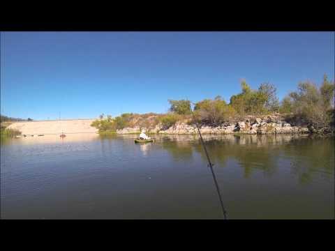 Super scooper approach at puddingstone reservoir doovi for Puddingstone lake fishing