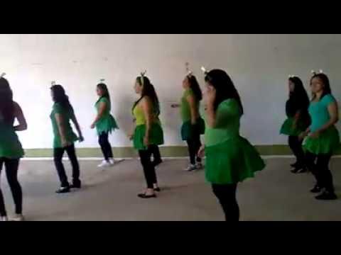 El Baile De Las Ranitas En Remix - 1 de 3