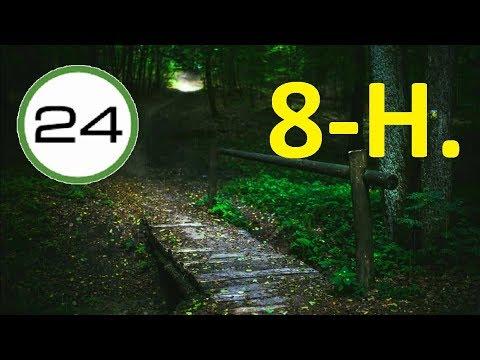 RAIN and THUNDERS sound to SLEEP 8 HOURS☔⚡ SOFT Rain and Distant THUNDERS in Forest to Sleep