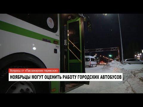 Жители Ноябрьска могут оценить работу городских автобусов
