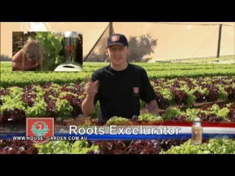 House Garden Nutrients Promo 1 YouTube