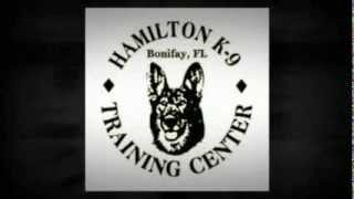 Hamilton K-9 Training Center - Dog Trainer - Bonifay, Fl