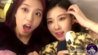 BLACKPINK THE BEST FUNNY MOMENTS