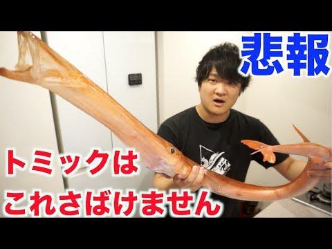 【悲報】トミックはこの超巨大魚さばけませんでした