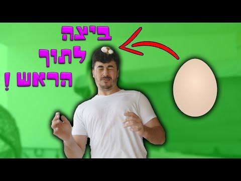 הביצה הזאת הרסה לי את התוכנית !