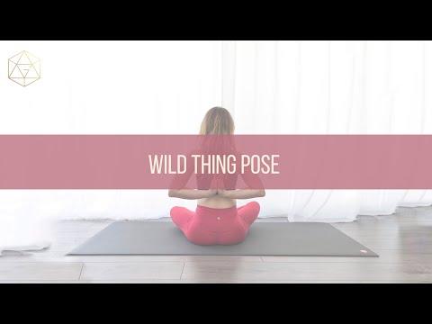 Wild Thing Pose How to do Camatkarasana