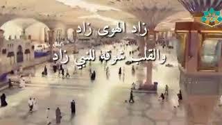 زاد الهوى زاد والقلب شوقه للنبي زاد