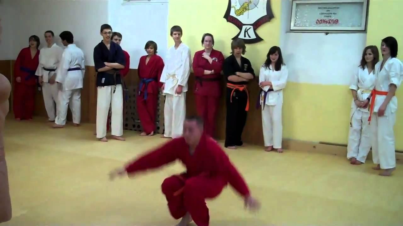 ausgewähltes Material hohe Qualitätsgarantie neue sorten Kampfsport Karate bei Bushido Esslingen