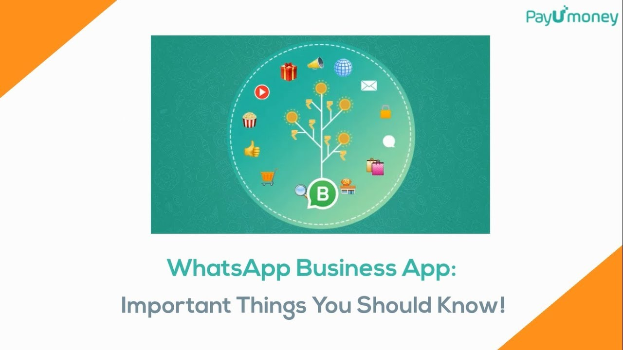 Whatsapp Business App Important Things You Should Know