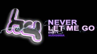 Baixar HUDIGI009A: Entity - Never Let Me Go (Hardcore Underground)
