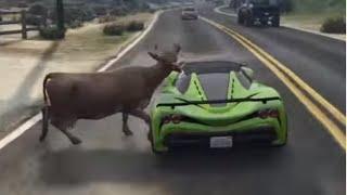 GTA 5 Poor cow, gta animal cruelty