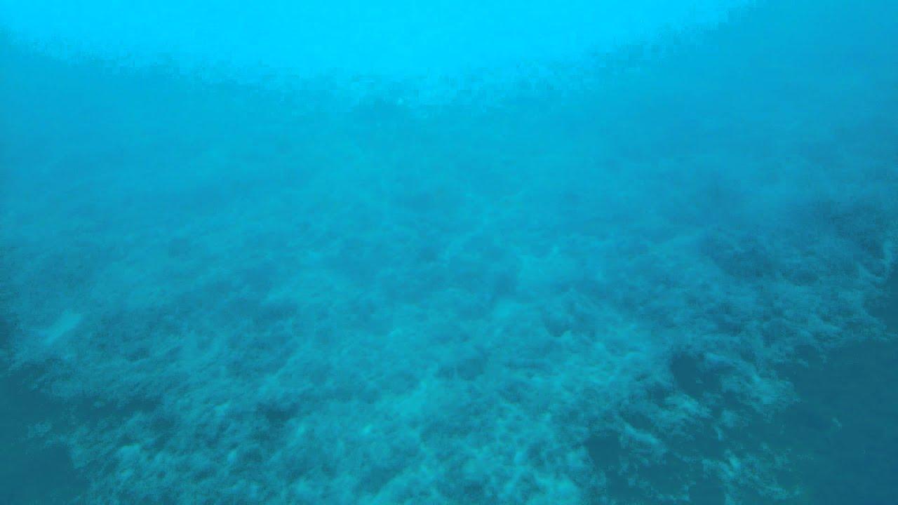 小琉球-半潛艇玻璃船看海底 - YouTube