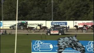 Vidéo de la course PMU KAMPIOENSCHAP NEDERLANDSE PAARDEN