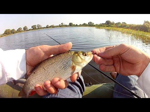 запрет на рыбалку в шостке на