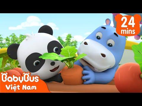 gửi hàng đi úc - Cây củ cải thần kỳ | Kiki và những người bạn | Hoạt hình thiếu nhi vui nhộn | BabyBus