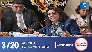 Sesión Comisión de Constitución 3 (17/07/19)