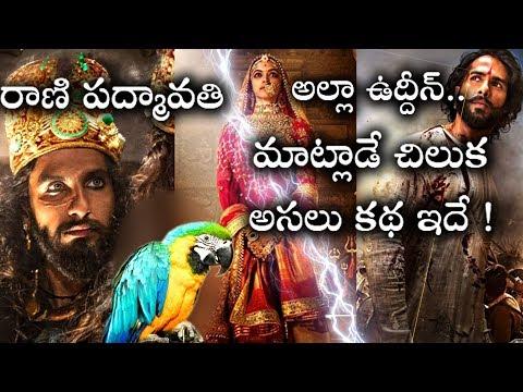 రాణి పద్మావతి రియల్ స్టోరీ..అల్లా ఉద్దీన్ దాడి..మాట్లాడే చిలుక ! | Padmavathi Real Story