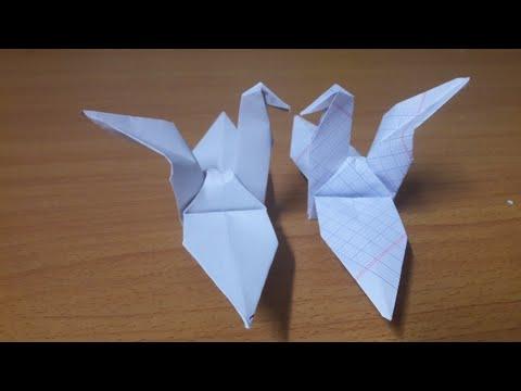Cách gấp con Hạc bằng giấy tập đơn giản.How to fold a paper crane | Foci