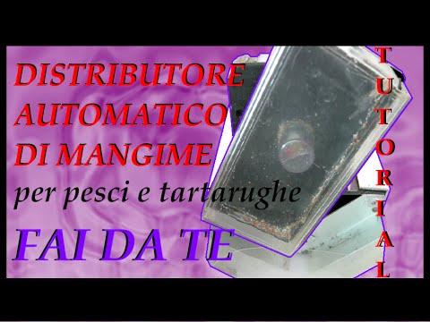 Distributore automatico di mangime per pesci o tartarughe for Vasche da interrare per tartarughe