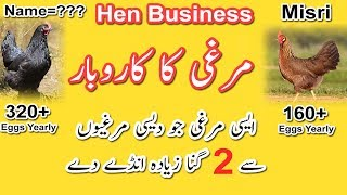 Egg Selling Part Time Business Idea | Home Based (URDU/HINDI)