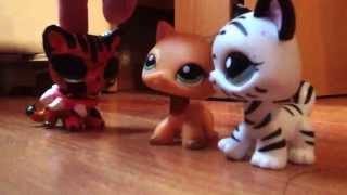 LPS: Коты-Воители: возрождение Небесного Племени (short film)
