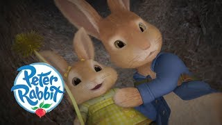 Peter Rabbit - The Wrong Rabbit Hole   Cartoons for Kids