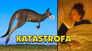 PROČ JE AUSTRÁLIE VE STAVU KATASTROFY KVŮLI KORONAVIRU! - Aik & Johanka